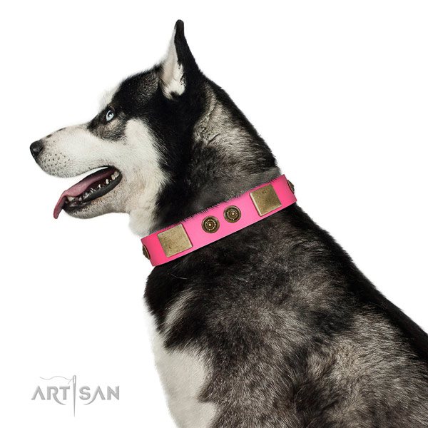 Easy adjustable dog collar crafted for your impressive doggie