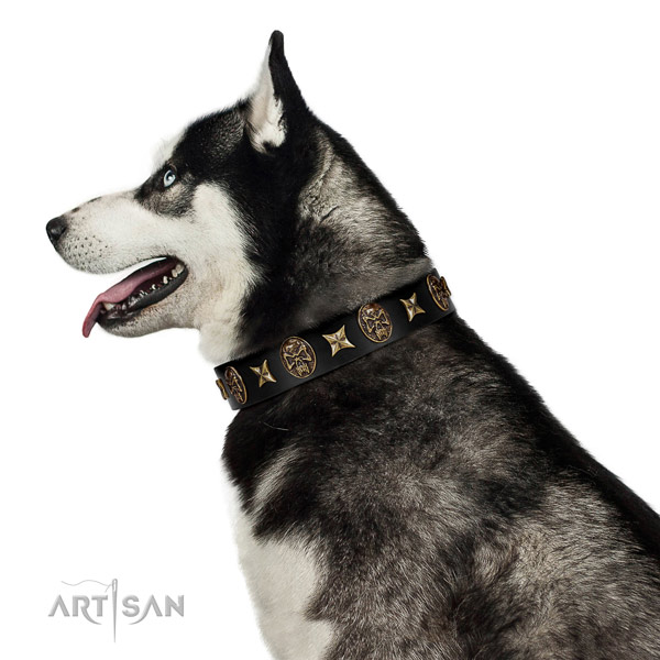 Comfortable wearing dog collar of natural leather with unique decorations