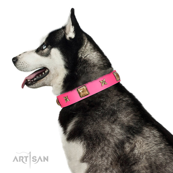 Genuine leather dog collar of top rate material with designer adornments