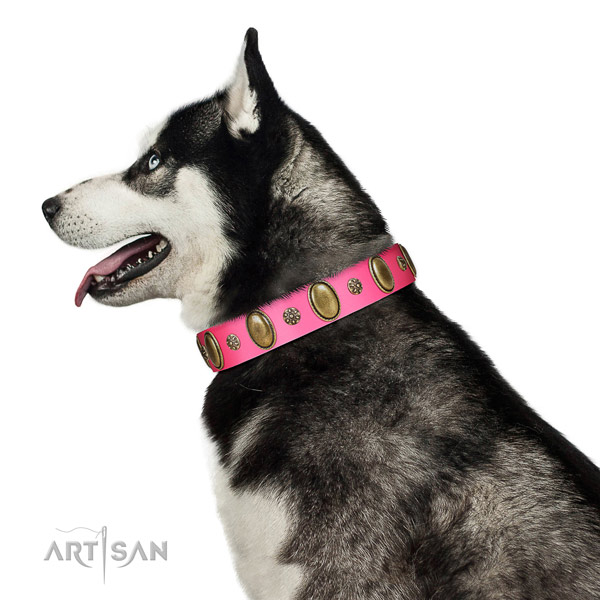 High quality full grain leather dog collar with corrosion resistant hardware
