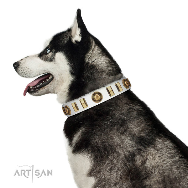 Easy wearing full grain natural leather dog collar with reliable D-ring