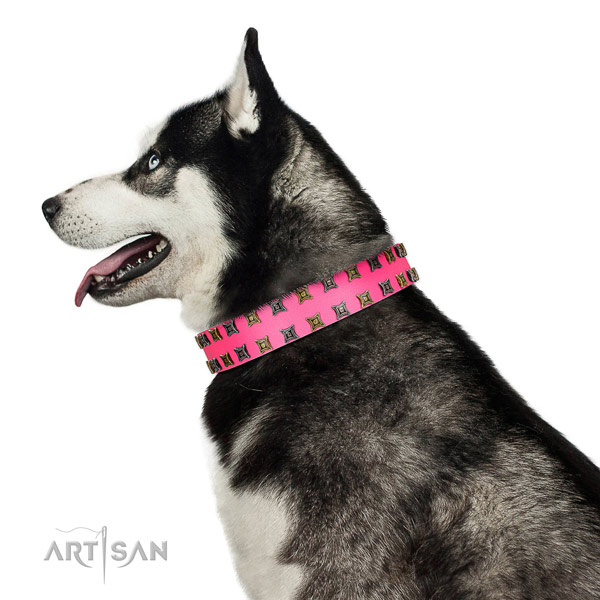 High quality leather dog collar with embellishments for your pet
