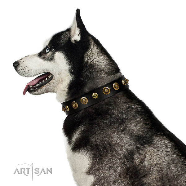 Soft to touch full grain genuine leather dog collar with embellishments for your doggie
