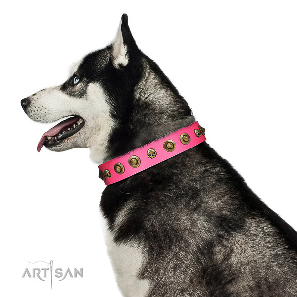 Stylish decorations on natural leather collar for your dog