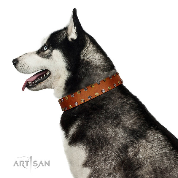 Easy wearing top notch natural leather dog collar with adornments