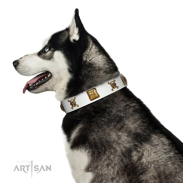 Fashionable natural leather dog collar with reliable adornments