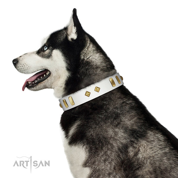 Comfortable wearing soft natural leather dog collar with decorations