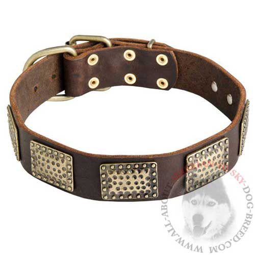 Leather Siberian Husky Collar with Massive Vintage Plates