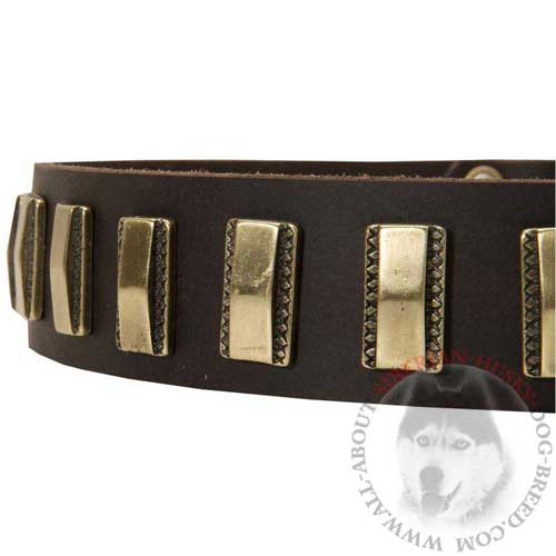 Golidish Brass Plates Decorate Leather Siberian Husky Collar
