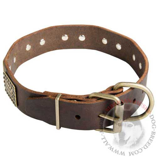 Brass Buckle and D-ring on Siberian Husky War Leather Collar