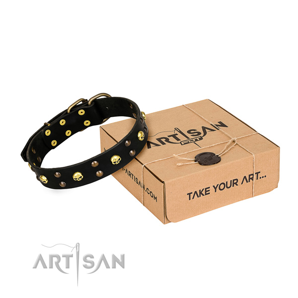 Casual leather dog collar with incredible embellishments