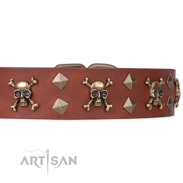 Genuine leather dog collar with pirate design