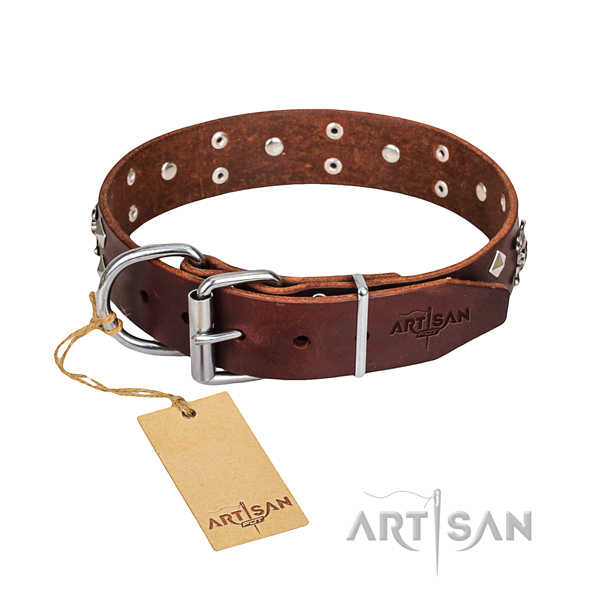 Strong leather dog collar with non-corrosive details