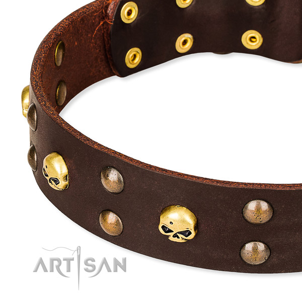 Daily leather dog collar for fail-safe use