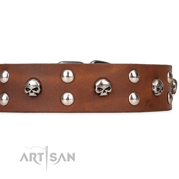 Full grain leather dog collar with smoothed leather strap