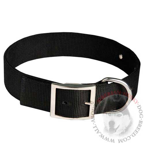 Identification Nylon Dog Collar with Easy Release Buckle for Siberian Husky