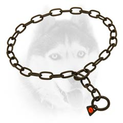Quality Choke Chain Siberian Husky     Collar in black color