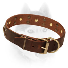 Leather Siberian Husky Collar     Decorated with Brass Studs and Circles