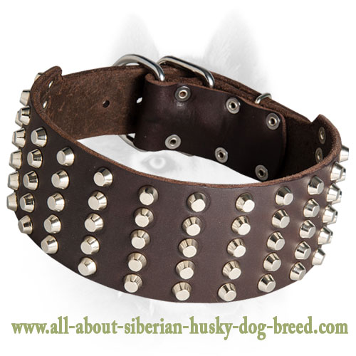 Extra Wide Leather Collar with Spikes for Siberian Husky