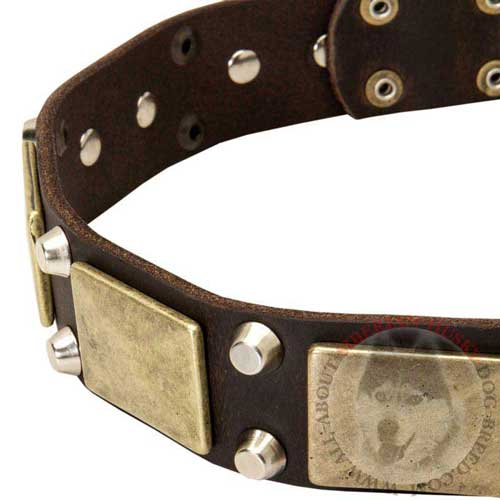 Leather Collar for Siberian Husky with Plates and Studs