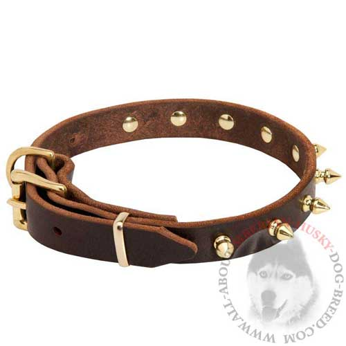 Brown Leather Siberian Husky Collar with Goldish Spikes