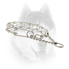 Strong Siberian Husky Metal Pinch     collar
