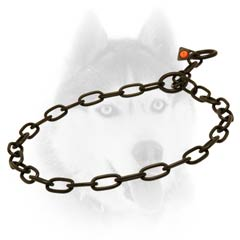 Strong Siberian Husky collar in black color