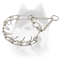 Siberian Husky     training Collar of high quality steel