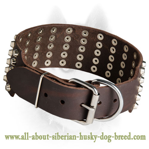Leather Collar for Siberian Husky with 4 Rows of Spikes