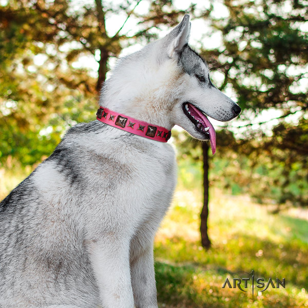 Siberian Husky leather dog collar with adornments for everyday use