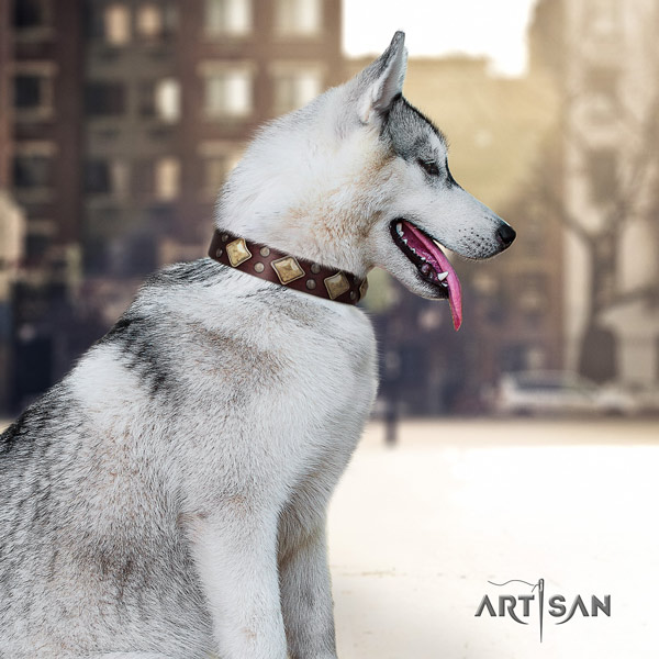 Siberian Husky natural genuine leather dog collar with adornments for comfy wearing