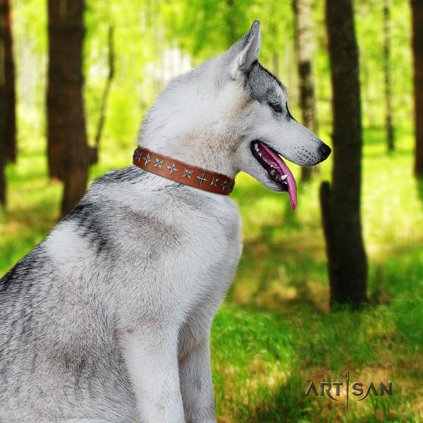 Siberian Husky full grain leather dog collar with decorations for easy wearing