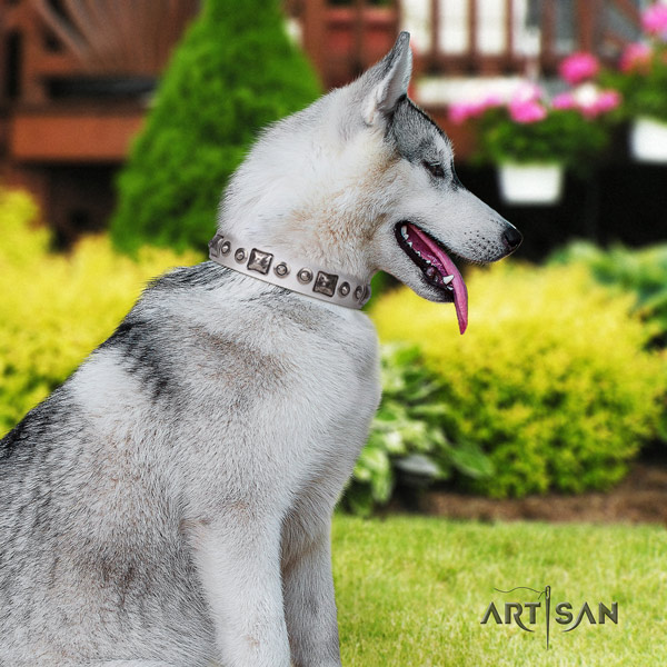 Siberian Husky leather dog collar with embellishments for fancy walking