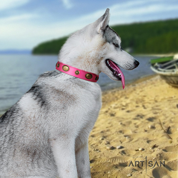 Siberian Husky leather dog collar with decorations for walking