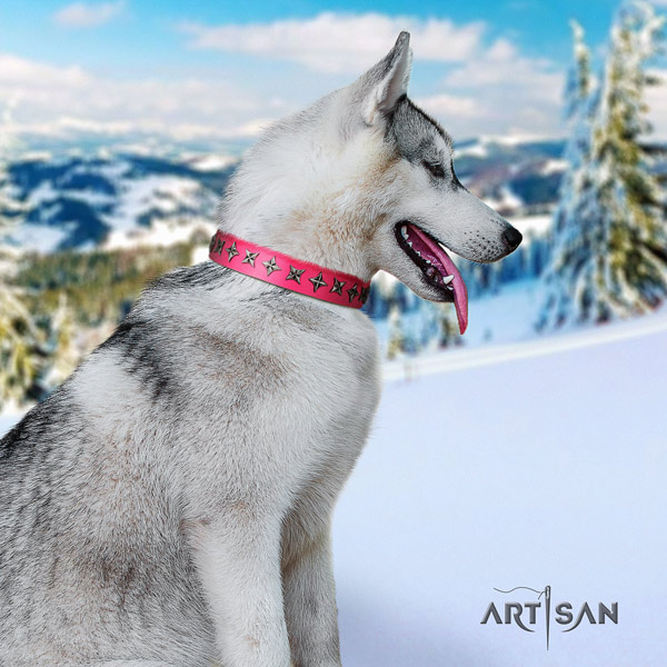 Siberian Husky leather dog collar with embellishments for daily use