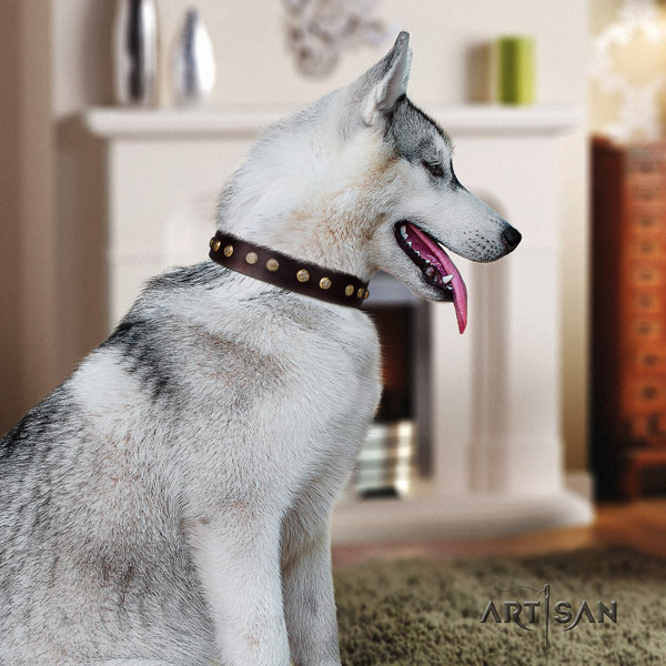 Siberian Husky natural genuine leather dog collar with embellishments for stylish walking