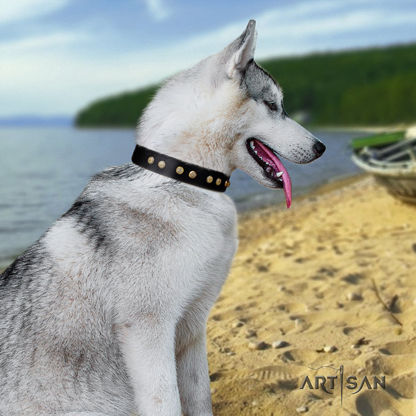 Siberian Husky full grain natural leather dog collar with decorations for comfy wearing