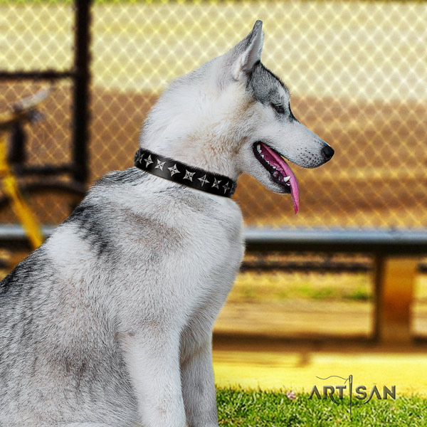 Siberian Husky leather dog collar with studs for handy use