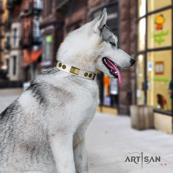 Siberian Husky full grain genuine leather dog collar with decorations for stylish walking