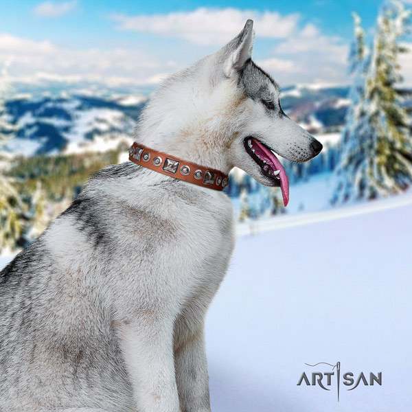 Siberian Husky leather dog collar with decorations for comfy wearing