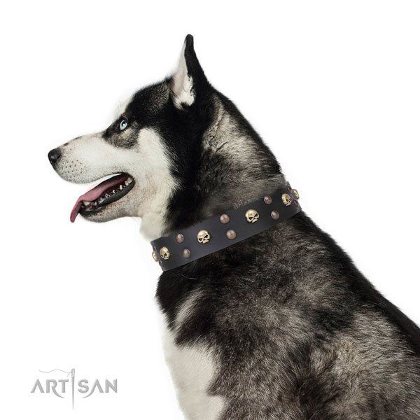 Siberian Husky easy wearing leather dog collar for handy use