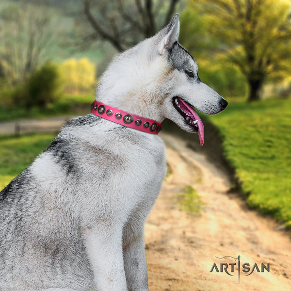 Siberian Husky full grain genuine leather dog collar with embellishments for easy wearing