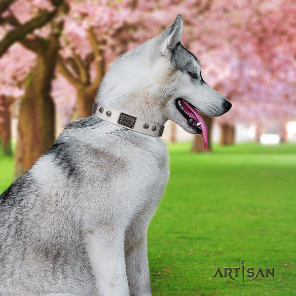 Siberian Husky natural genuine leather dog collar with embellishments for walking