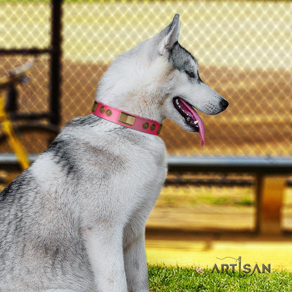 Siberian Husky natural genuine leather dog collar with decorations for easy wearing