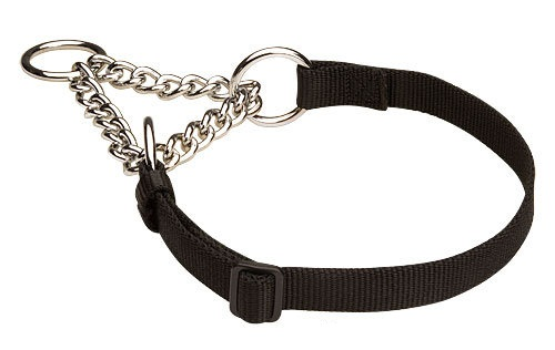 Adjustable Nylon Martingale Dog Collar for Training Sessions