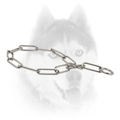 Strong Siberian Husky collar with fur-saving links
