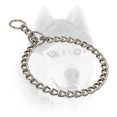 Siberian Husky training Collar of high quality