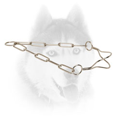 Siberian Husky Show Collar of finest quality