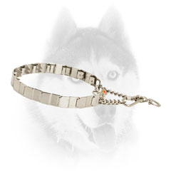Strong Siberian Husky Collar for Better Behavior