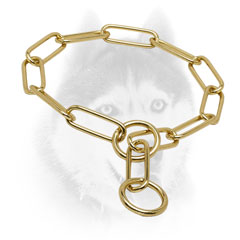 Strong Siberian Husky collar with fur-saving brass     links